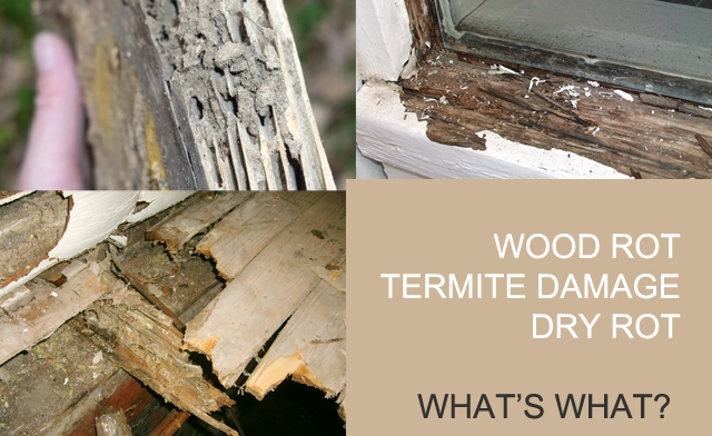 Difference Between Wood Rot Dry Rot And Termite Damage