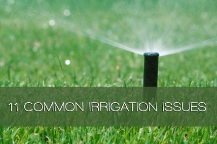 11-COMMON-SPRINKLER-ISSUES