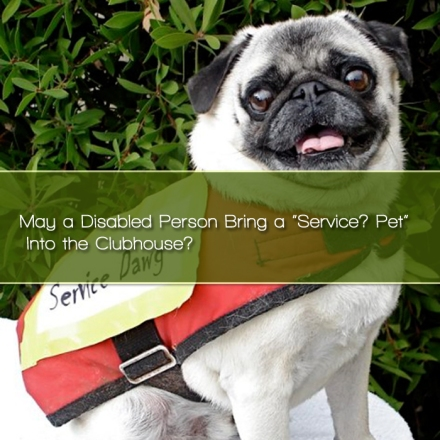 """May a Disabled Person Bring a """"Service? Pet"""" Into the Clubhouse?"""
